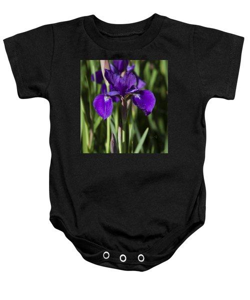 Eloquent Iris Baby Onesie