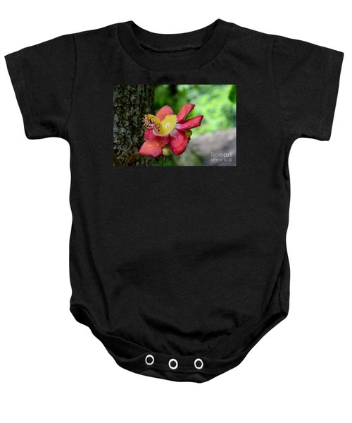 Flower Of Cannonball Tree Singapore Baby Onesie