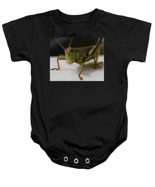 Grasshopper Baby Onesie by Dan Sproul