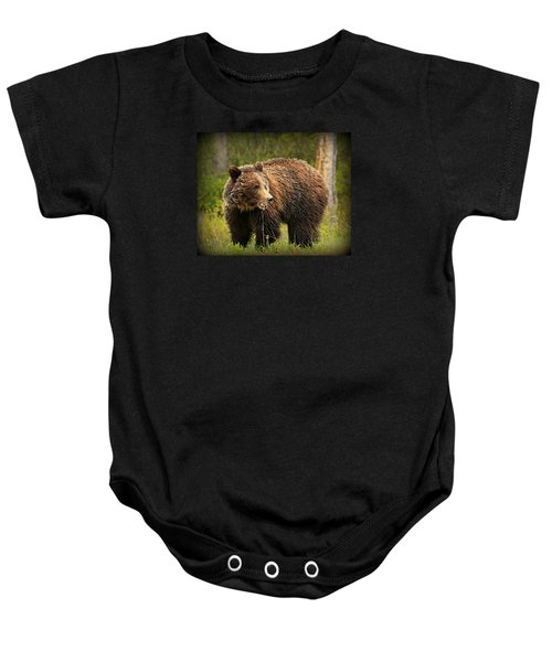 Grazing Grizzly Baby Onesie