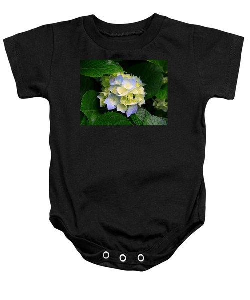 Hydrangeas Baby Onesie