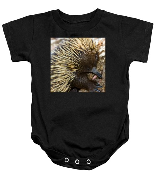 Baby Onesie featuring the photograph I See Some Ants by Miroslava Jurcik