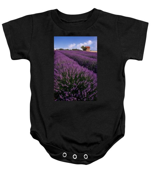 Lavender In Provence Baby Onesie