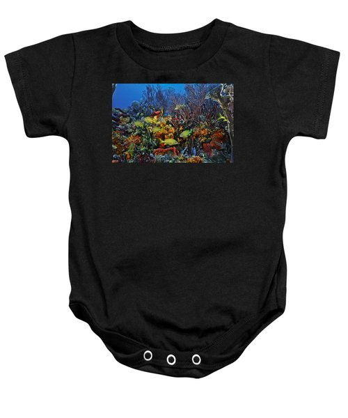 Lynns Reef On A Perfect Day Baby Onesie