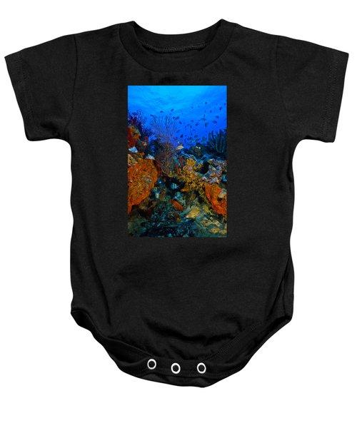 Lynns Reef Baby Onesie