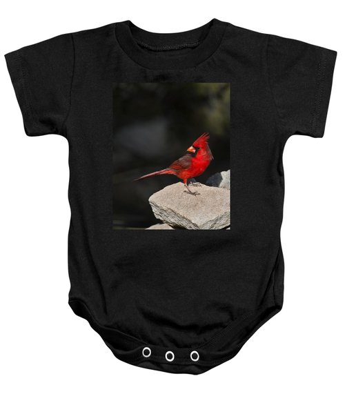 Male Cardinal Baby Onesie by Gary Langley