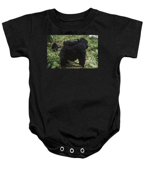 Mountain Gorilla Baby On Mothes Back Baby Onesie