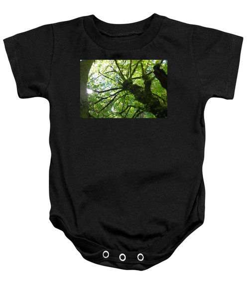 Baby Onesie featuring the photograph Old Growth Tree In Forest by Shane Kelly