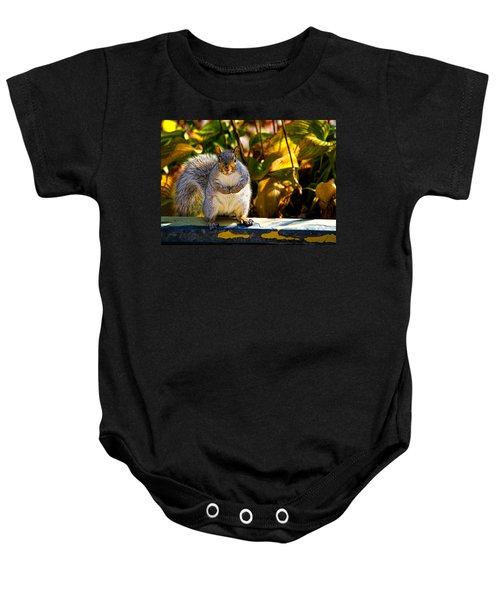 One Gray Squirrel Baby Onesie