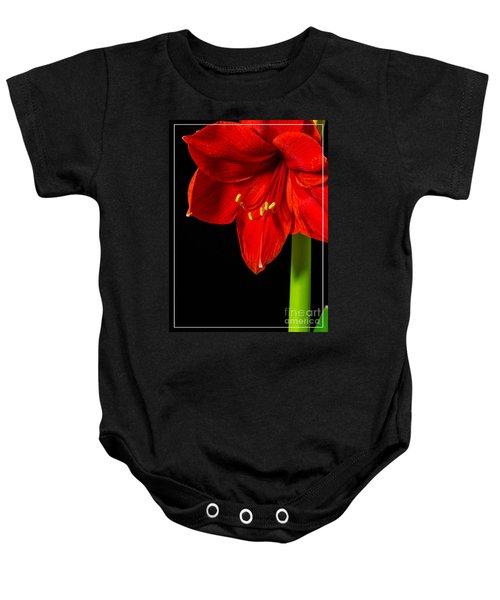 Red Amaryllis Flower Baby Onesie