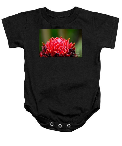 Red Torch Ginger Flower Head From Tropics Singapore Baby Onesie
