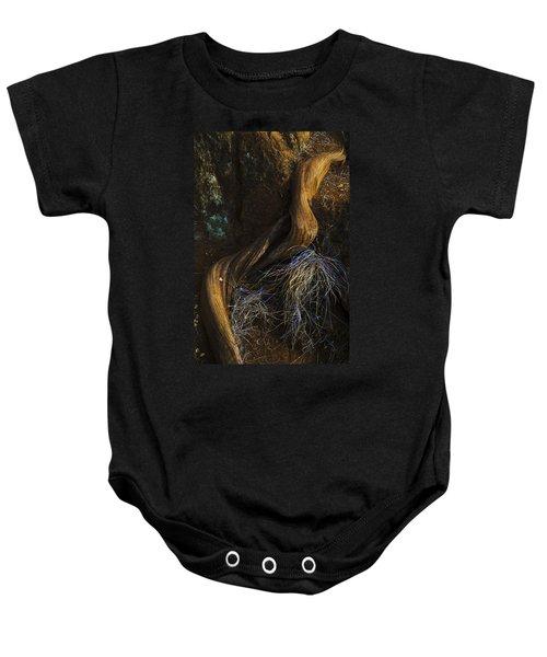 Tree Root Baby Onesie