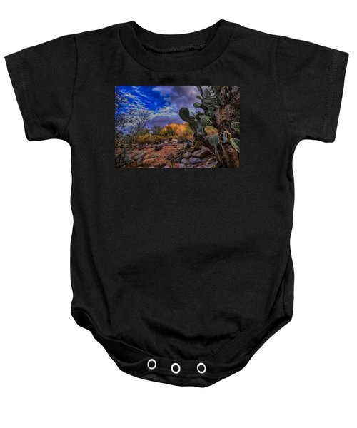 Baby Onesie featuring the photograph Sonoran Desert 54 by Mark Myhaver