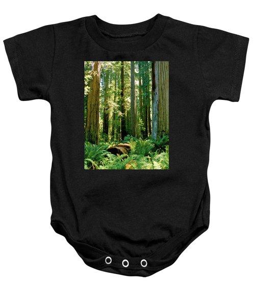 Stout Grove Coastal Redwoods Baby Onesie