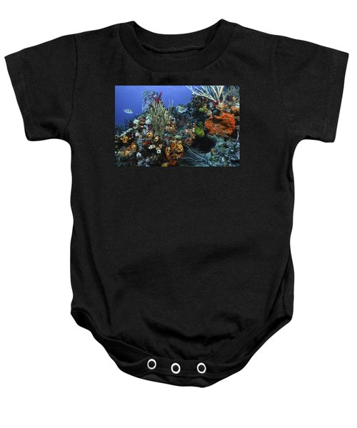 The Busy Reef Baby Onesie