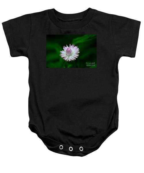 Violet And White Flower Sepals And Bud Baby Onesie