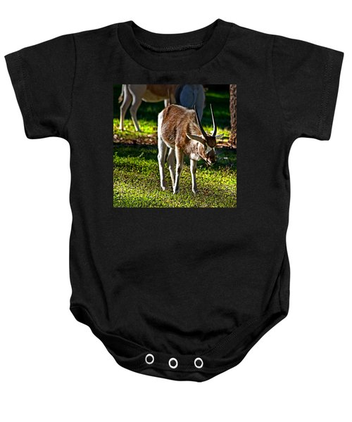 Youngster Addax Baby Onesie