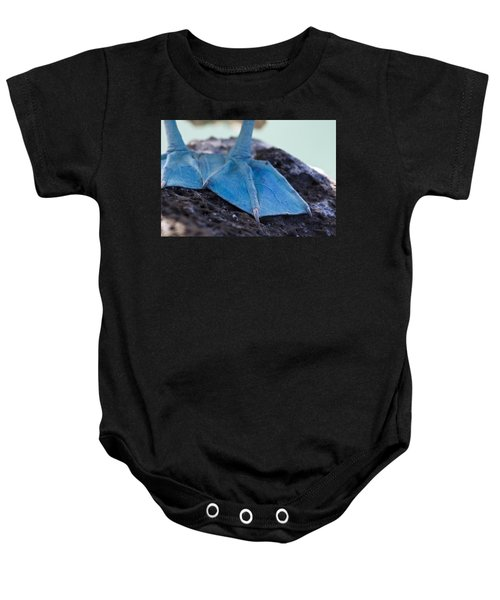 Blue Footed Booby Baby Onesie by Dave Fleetham