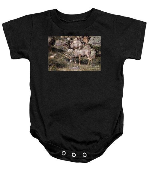 Mule Deer Bucks Baby Onesie
