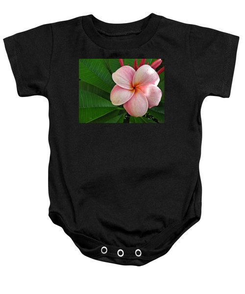 Baby Onesie featuring the photograph Pink Plumeria by Shane Kelly