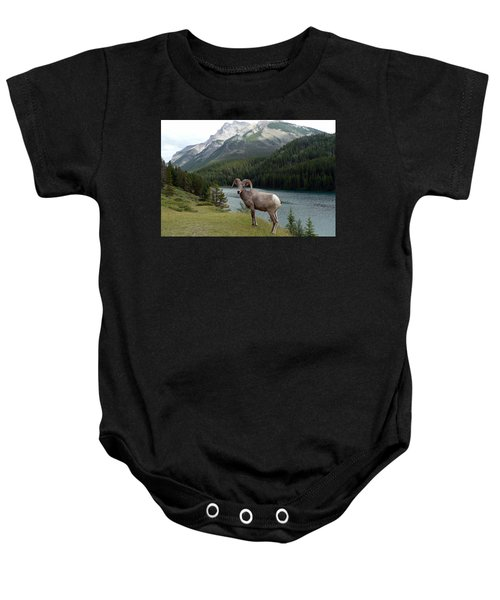 Portrait Of A Bighorn Sheep At Lake Minnewanka  Baby Onesie