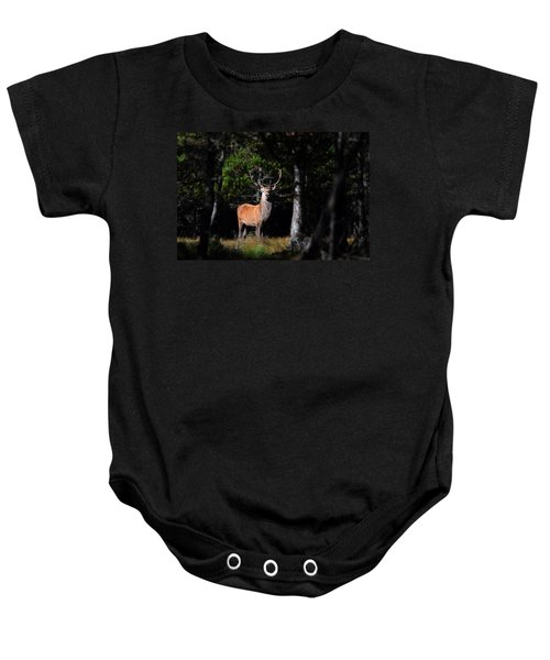Stag In The Forest Baby Onesie