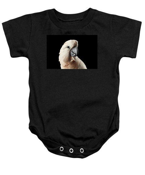 Closeup Head Of Beautiful Moluccan Cockatoo, Pink Salmon-crested Parrot Isolated On Black Background Baby Onesie