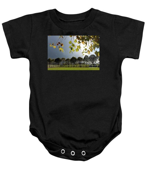 Denbies Vineyard Surrey Uk Baby Onesie