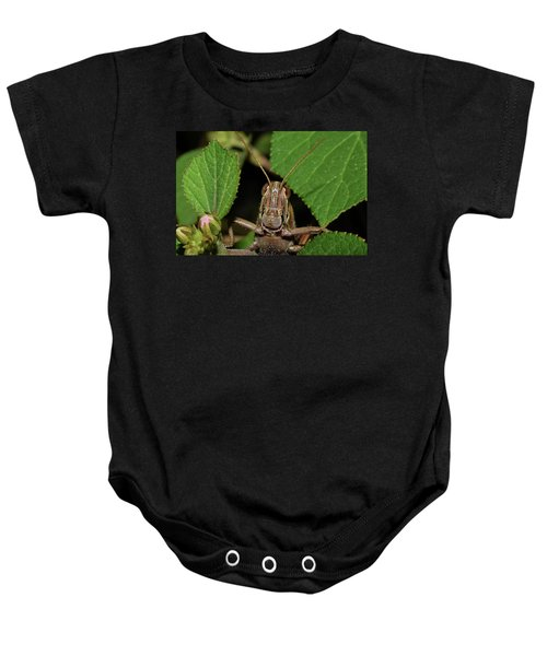 Grasshopper Baby Onesie
