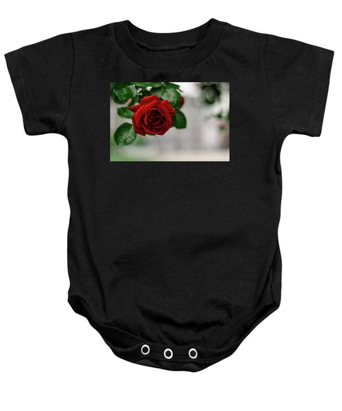Roses In The City Park Baby Onesie