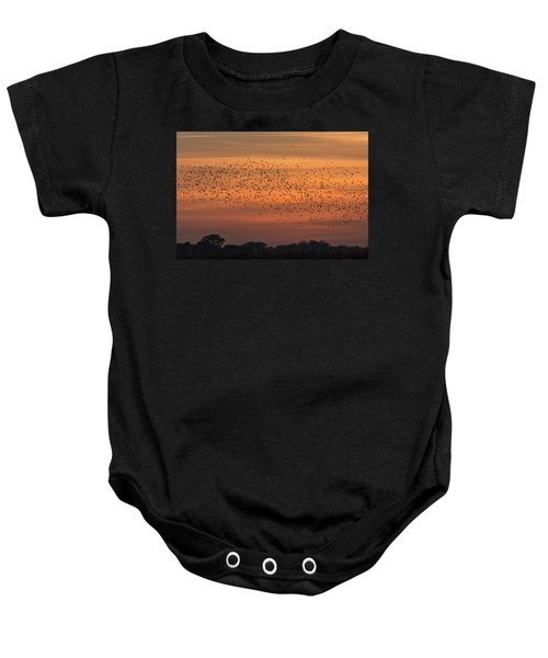 Sunset Starlings  Baby Onesie