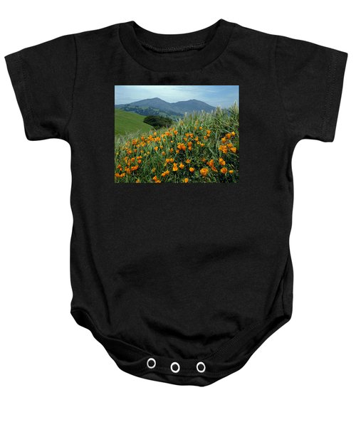 1a6493 Mt. Diablo And Poppies Baby Onesie