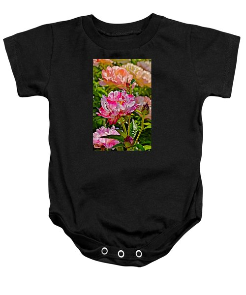 2015 Summer's Eve At The Garden Candy Stripe Peony Baby Onesie