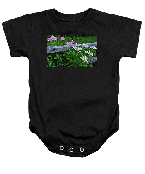 2015 Summer's Eve Neighborhood Garden Front Yard Peonies 2 Baby Onesie