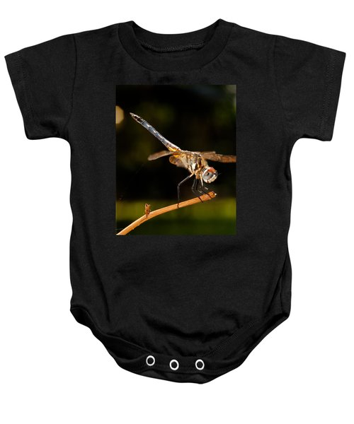 A Dragonfly Baby Onesie