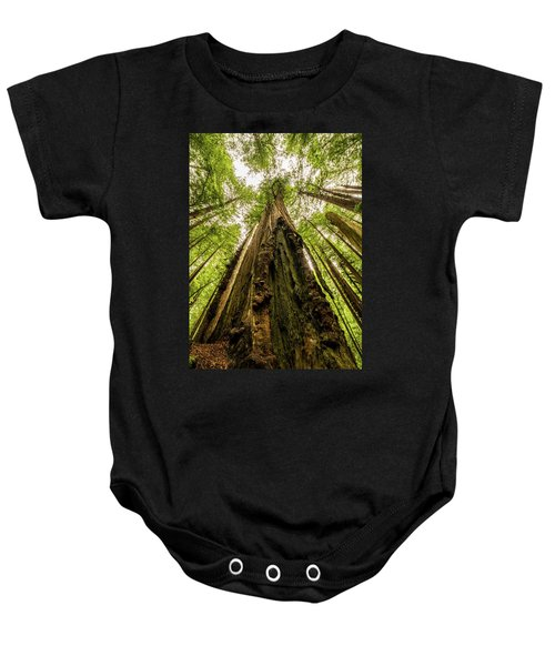 All Hail The King Baby Onesie