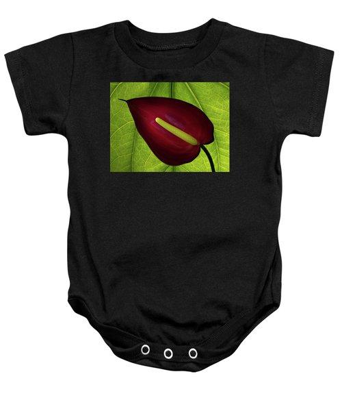 Anthurium Baby Onesie