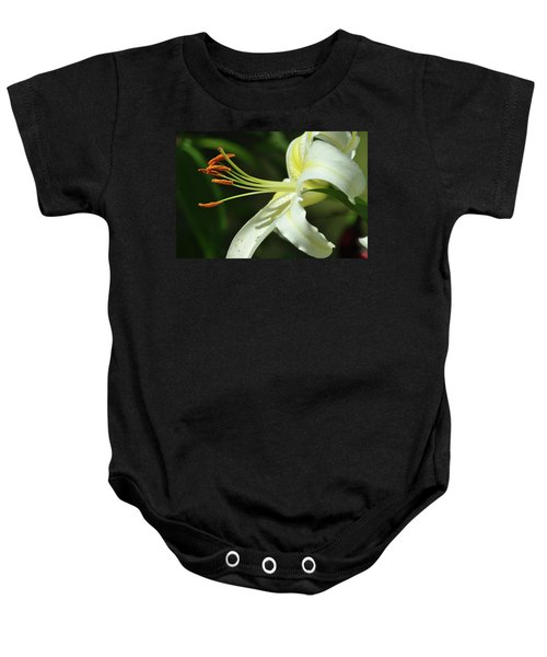 Asiatic Lily No 3 Baby Onesie