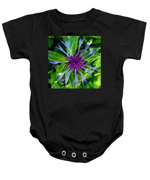 Bachelor Button Blossom Baby Onesie