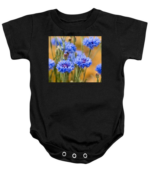 Bachelor Buttons In Blue Baby Onesie