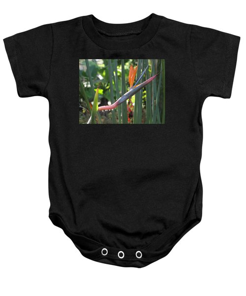 Bird Of Paradise Dripping Baby Onesie