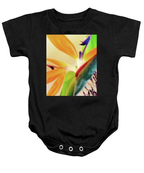 Birds Bromeliads Halyconia 2 Baby Onesie