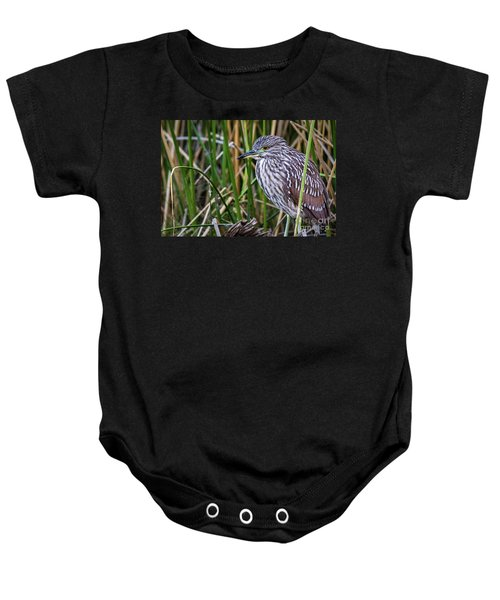 Baby Onesie featuring the photograph Black-crowned Night Heron  by Vincent Bonafede