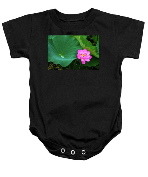 Blooming Pink And Yellow Lotus Lily Baby Onesie
