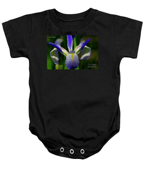 Blue Flag Iris Baby Onesie