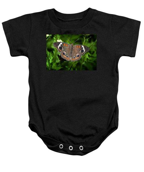 Buckeye Butterfly Baby Onesie