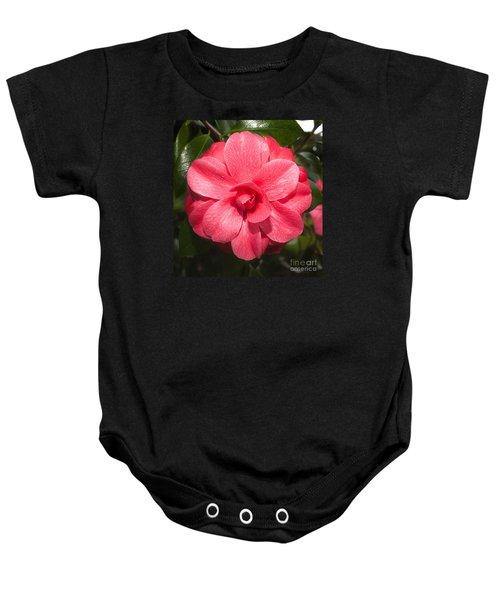 Camellia Japonica ' Mathotiana Rosea' Baby Onesie