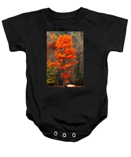 Cataloochee Color Baby Onesie