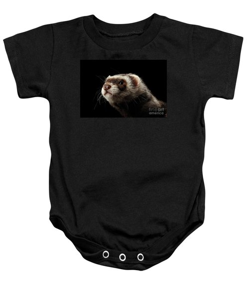 Closeup Portrait Of Funny Ferret Looking At The Camera Isolated On Black Background, Front View Baby Onesie
