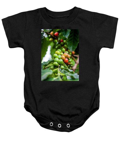 Coffee Plant Baby Onesie